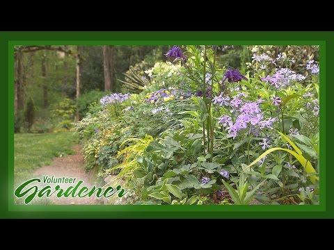 Spring in Paris (TN) | Volunteer Gardener