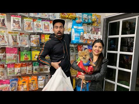 1lakh-rs-winter-shopping-for-my-dog-challenge-?-😱😱