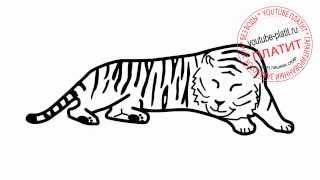 Как нарисовать спящего взрослого тигра(Как нарисовать тигра поэтапно карандашом за короткий промежуток времени. Видео рассказывает о том, как..., 2014-07-10T14:01:53.000Z)
