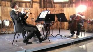 Mozart: Flute Quartet no. 3; 1st Movement