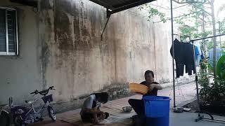 Sàng gạo và lau bàn ghế đá - An Tuong Dau Tien