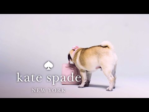 the-hayes-street-sam-bag-is-a-girl's-best-friend- -kate-spade-new-york