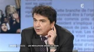 Mots croises - Les révolutions arabes et nous - 07/02/2011