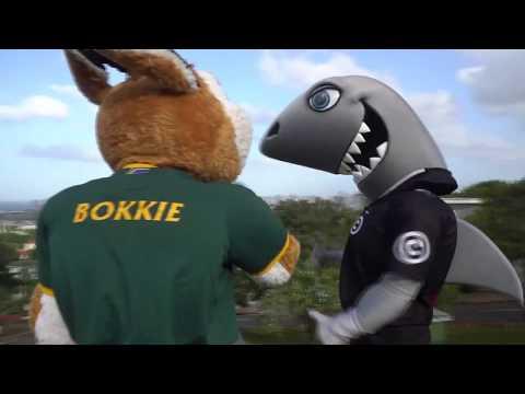 Sharkie and Bokkie