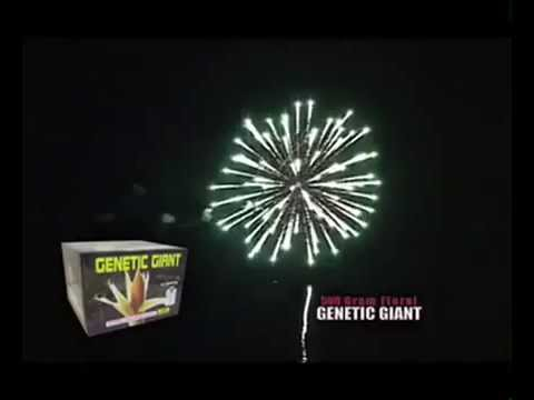 Genetic Giant by Hot Shot Brand Fireworks
