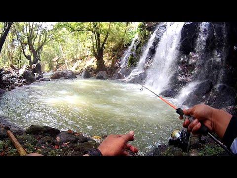 Mancing Di Sungai AIR TERJUN TERSEMBUNYI Di Pegunungan | Mancing Bali