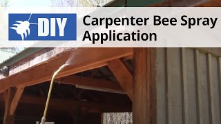 Carpenter Bee Spray Application