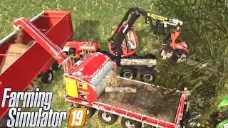 #110 - CIPPATO PER L'INVERNO - FARMING SIMULATOR 19 ITA RUSTIC ACRES