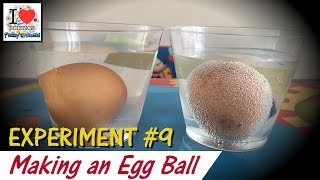 What happens when we mix Egg with Vinegar| Prakhar Trikha | Science Experiment - 9
