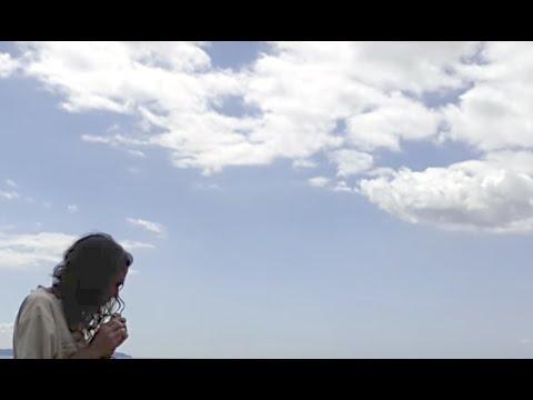 Koauau Takapu on Tiritiri Matangi by Rob Thorne