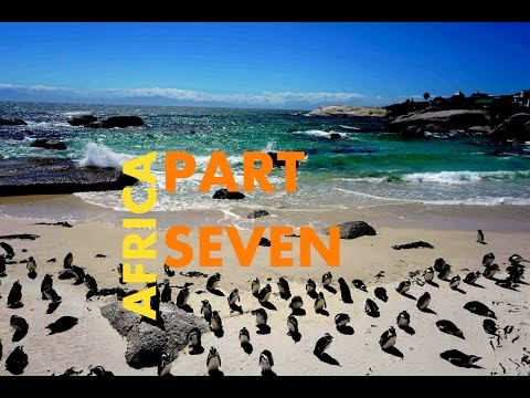 SOUTH AFRICA: Boulders Beach, Cape Point, Hout Bay, Chapman's Peak - AFRICA VLOG PART 7