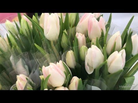 Орхидеи и Цветы в букетах в Ленте к 8 Марта!