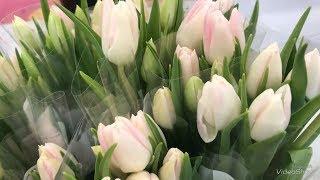 Орхидеи и Цветы в букетах в Ленте к 8 Марта