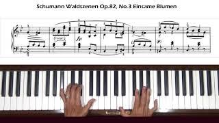 Schumann Waldszenen Op. 82, No. 3 Einsame Blumen Piano Tutorial