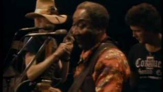 Muddy Waters - Walking Thru the Park - ChicagoFest 1981