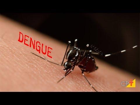 Vírus e Doenças Associadas - Aula IX Aedes Aegypti - Professor Eventual Vol. IV