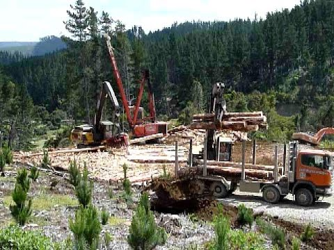 forest machines work site hauling logs new zealand