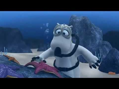bernard the funny bear scuba diving youtube