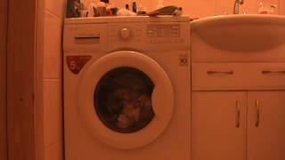 видео как в стиральной машине почистить фильтр