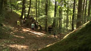 Camping Nommerlayen Luxemburg