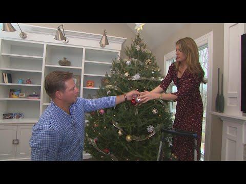 Mick Lee - Tips to Keep Your Christmas Tree Standing all Season