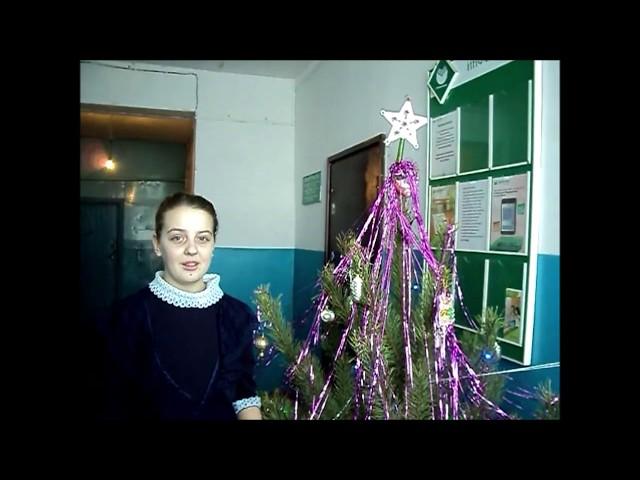 Изображение предпросмотра прочтения – ДарьяАртюкова читает произведение «Прекрасный праздник - Новый год!» М.С.Сафиулина