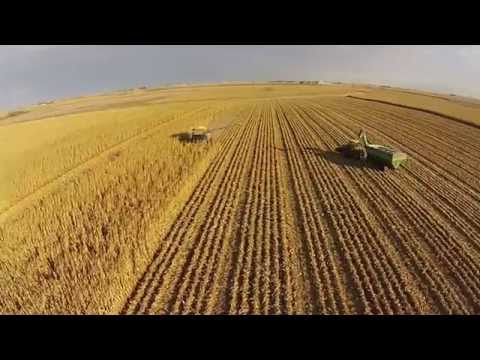 Bristle Farm Corn Harvest. Amazing drone footage. Watch the whole process!