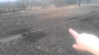 Грецкий орех. Грецький горіх, лунки, схема посадки.(В цьому відео я розказую про розмір лунок для посадки сажанців, а також схему посадки., 2015-03-11T19:41:37.000Z)