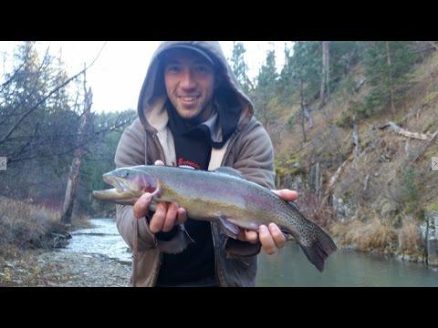 Black Hills South Dakota Trout Fishing