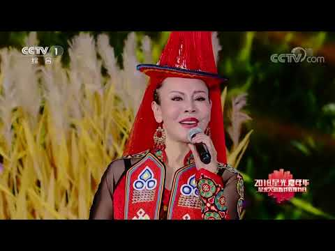 [星光大道]《鸿雁》 演唱:呼斯楞 傲日其愣 等 | CCTV