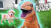 T-REX DINOSAUR SUIT PRANK ON DOG!