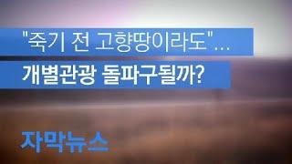 """[자막뉴스] """"죽기 전 고향땅이라도"""" 개별관광 돌파구될…"""