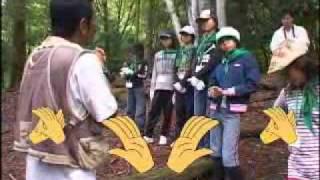 平成21年7月29日から3日間にわたって京都で行われた第20回緑の...