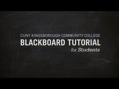 blackboard kbcc
