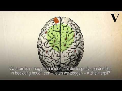 Jagen op de boeven van het brein - de Volkskrant