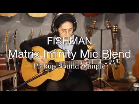Fishman Matrix Infinity Mic Blend Pickup Recording Test / 원미사운드