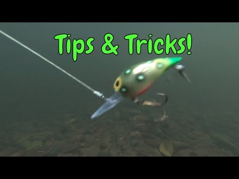 5 Tips For Fishing Brad's Wigglers For Salmon & Steelhead