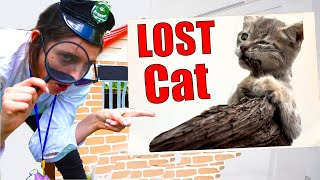 Lost her Cat -  the best cat story for kids