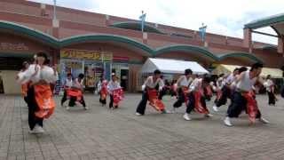 2013年7月14日 さのよいファイヤーカーニバル 熊本県あらおシティモール.