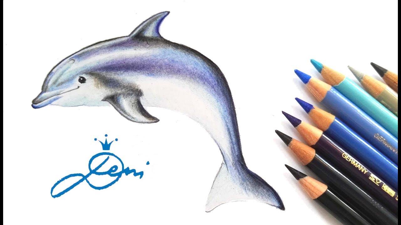 Das Laechelnder Delphin Springt Ausmalbild 14