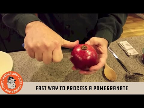 Fast Way to Process a Pomegranate
