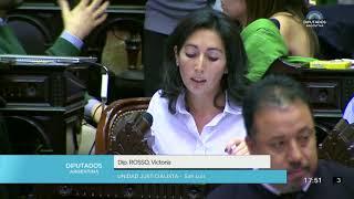 230-D-18 (y otros) DE LEY. INTERRUPCIÓN VOLUNTARIA DEL EMBARAZO. RÉ...