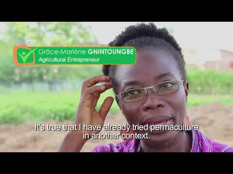 Les Jardins Chez Marlène: Sustainable Organic Food Production in Benin, West Africa