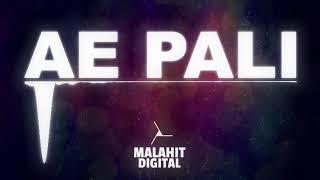 Djexon x Mike Ride - Ae Pali RMX (Dee Marcus x Phill Park)