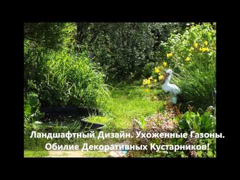 Купить Дачу в Ленинградской области