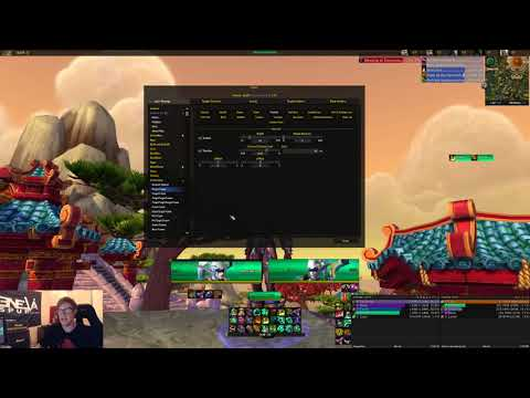 Player Target Unit Frames Setup Elvui Guide Youtube