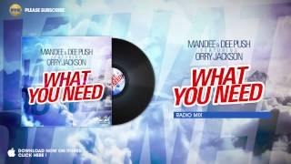 Mandee & Dee Push ft. Orry Jackson - What you need (Radio Mix)