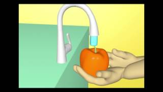 Download Video animasi 3d bahaya penyakit diare MP3 3GP MP4