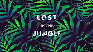 LOST IN THE JUNGLE - (Downtempo, Electro Tribal & Ethnic) - Compilation