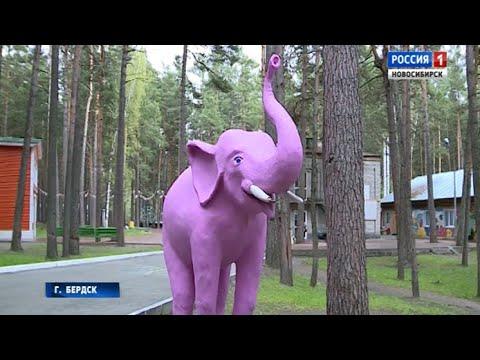 Летние лагеря Новосибирской области открывают сезон детского отдыха